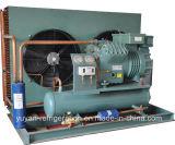 Bizter Brand Condensing Unit für Kühlraum