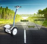 fuori dalla strada 15 misurano un auto in pollici delle 2 rotelle che equilibra il motorino elettrico con la barra della maniglia