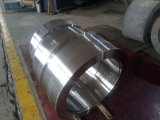 증기 터빈 부속 또는 부속품 의 주축선 증기 물개 소매, 주요한 축선 증기 물개 소매