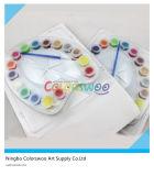 peinture acrylique non toxique 16*5ml pour des étudiants et des enfants