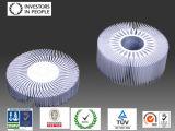 Profils en aluminium/en aluminium d'extrusion pour le radiateur d'industrie