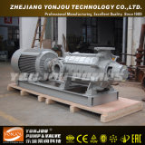 De Meertrappige CentrifugaalPomp van de dieselmotor