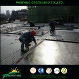Madera contrachapada de la forma del grado de WBP para el uso de la construcción con cementos