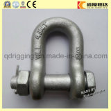 U. S Type Screw Pin Bow Anchor Swivel Shackle