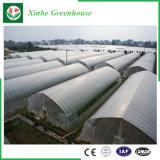 농업 다중 경간 정원 플레스틱 필름 온실
