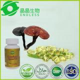 Capsula dell'olio del fungo di Duanwood Ganoderma della medicina di Ayurvedic