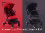 Verwanztes Säuglingskleinkind-verwanzter Baby-Spaziergänger