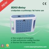 Bd02 Máquina de extracción de grasa de la crioterapia para uso personal