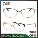 Recentste Frame 42-994 van het Metaal van het Oogglas van Eyewear van het Ontwerp Optisch