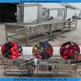 Máquina de lavagem e de secagem do Gooseberry Lj-500
