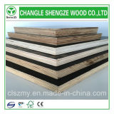 4X8 Feet Poplar Birch Core Black Film Faced Marine Plywood