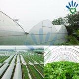 Tela não tecida da agricultura para a proteção do inverno das plantas de encontro à geada e à perda de água