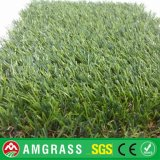 Golf Putting Green Artificial Lawn (AMFT424-30D)