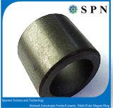 알파철 이방성 다극 자석 반지는 제품을 주문을 받아서 만들었다