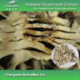 100% натуральные грибы Maitake извлечения (7 - 1: 30% Полисахаридов)