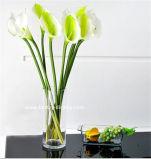 Florero de acrílico claro del vidrio orgánico (BTR-Q8002)