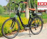 مدينة درّاجة لأنّ سيدة و [ليثيوم بتّري] درّاجة كهربائيّة