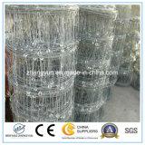 Rete fissa saldata della rete metallica/rete fissa animale/rete fissa del ferro