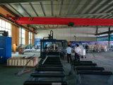 Machine de découpage en acier de poutre en double T de plasma de commande numérique par ordinateur avec du ce
