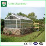 Grande estufa de vidro econômica com ventilação Sysytem para a venda