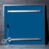 Chaufferette de panneau blanche debout fixée au mur ou libre de l'infrarouge IR