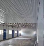 Casa estrutural pré-fabricada modular dos edifícios da fabricação