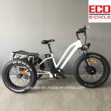 سمينة إطار العجلة وسبيكة إطار درّاجة ثلاثية كهربائيّة مع [ليثيوم بتّري]
