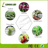 13,5 W à LED à spectre complet grandir la lumière du soleil pour les fleurs de légumes de serre