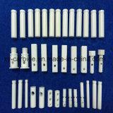 La precisión de cerámica avanzada de Cerámica de zirconio cerámica alúmina