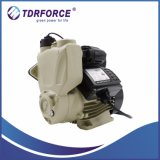 Automatische Wasser-Pumpe mit Schaltkarte-Vorstand