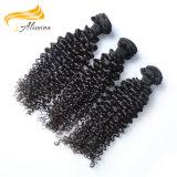21 фабрики 100 индейца Remy лет утка человеческих волос