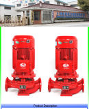 Vertical Xbd-Isg Individual-Training course Fire Pump Factory Direct