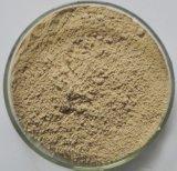 Природные Shitake грибной экстракт порошок Lentinan 50%