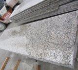 Witte Graniet van de Plak van het Graniet van de Huid van de tijger het Witte