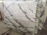 Clivia слоя из зеленого мрамора для кухни и ванной комнатой/стены и пол