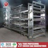 Matériel de cage de couche d'oeufs de ferme avicole pour la ferme du Kenya