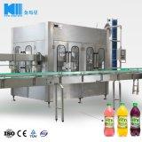 Completare il succo di frutta che elabora il riempimento e la catena d'imballaggio