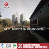 Gabbia di batteria della Cina per l'azienda agricola dell'Algeria