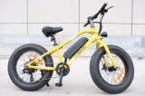 New Hot 2018 Conceited person Cars Electric Bicycle