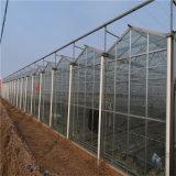 De goedkope Serre van Invernadero van de Tunnel van de Prijs van de Fabriek Commerciële Gegalvaniseerde Landbouw