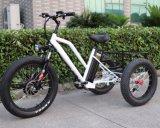 後部貨物が付いている3つの車輪の電気自転車