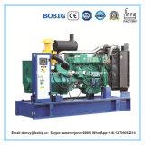 Dieselpreis des generator-250kVA durch Ricardo Engine