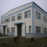 다른 신형 직업적인 디자인 구조상 프레임 강철 건물