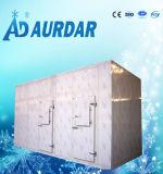 Kaltlagerungs-Raum für gefrorene Fische, Chicke, Fleisch