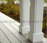 L'eau/Decking extérieur facile sans humidité d'Assemblée et de démontage WPC
