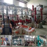 30t/d кукурузной муки завод по переработке