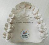 中国の歯科実験室からのクリニックのためのZorconicのはめ込上張りの総義歯