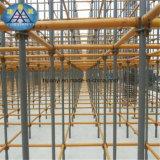 A grande construção de edifício rápida instala o sistema rápido do andaime do fechamento