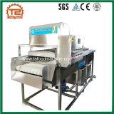 Grüner Pfeffer-und Rübe-Pinsel-Unterlegscheibe und Waschmaschine