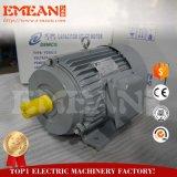 Fase Três Pesados Motor Eléctrico Magnético 50hp, certificado CE
